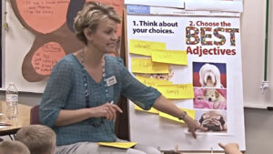 Mini-Lesson: Choose the Best Adjectives